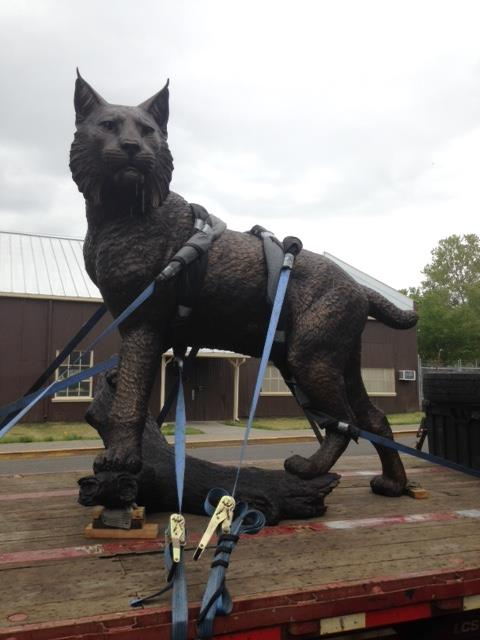 First day of delivery for the new Wildcat statue